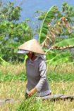 Thailand Rundreise Aktiv © B&N Tourismus
